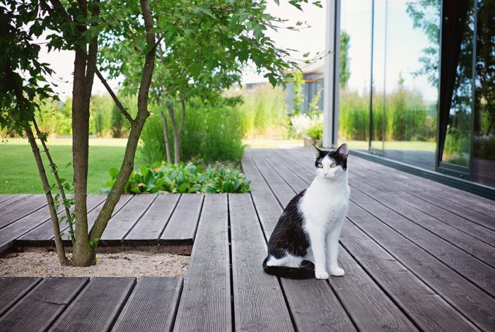 Práce zahradních architektů z atelieru Flera je zaměřena na detail a okouzlí vás i celkovým dojmem