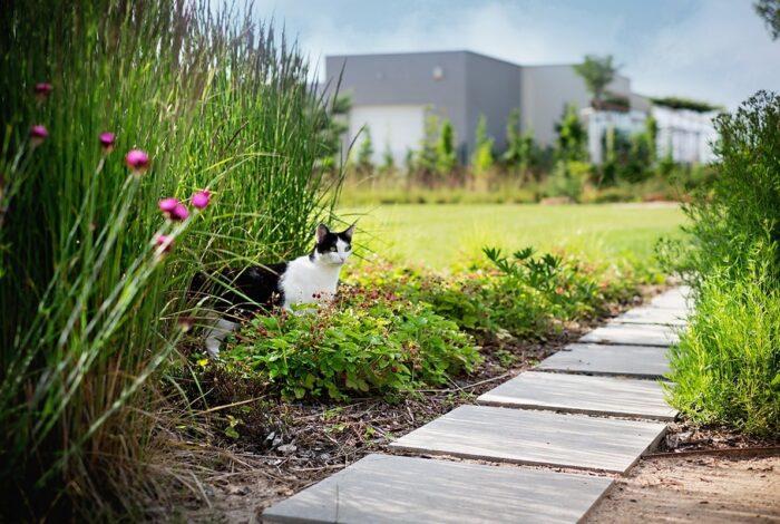 Atelier Flera produkuje zahrady s příběhem, které mají duši