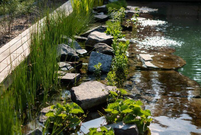 Díky skvělé práci zahradních architektů Flera design vyhráli soutěž Koupací jezírko 2019